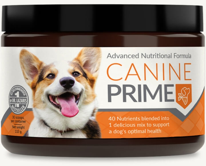 Canine Prime